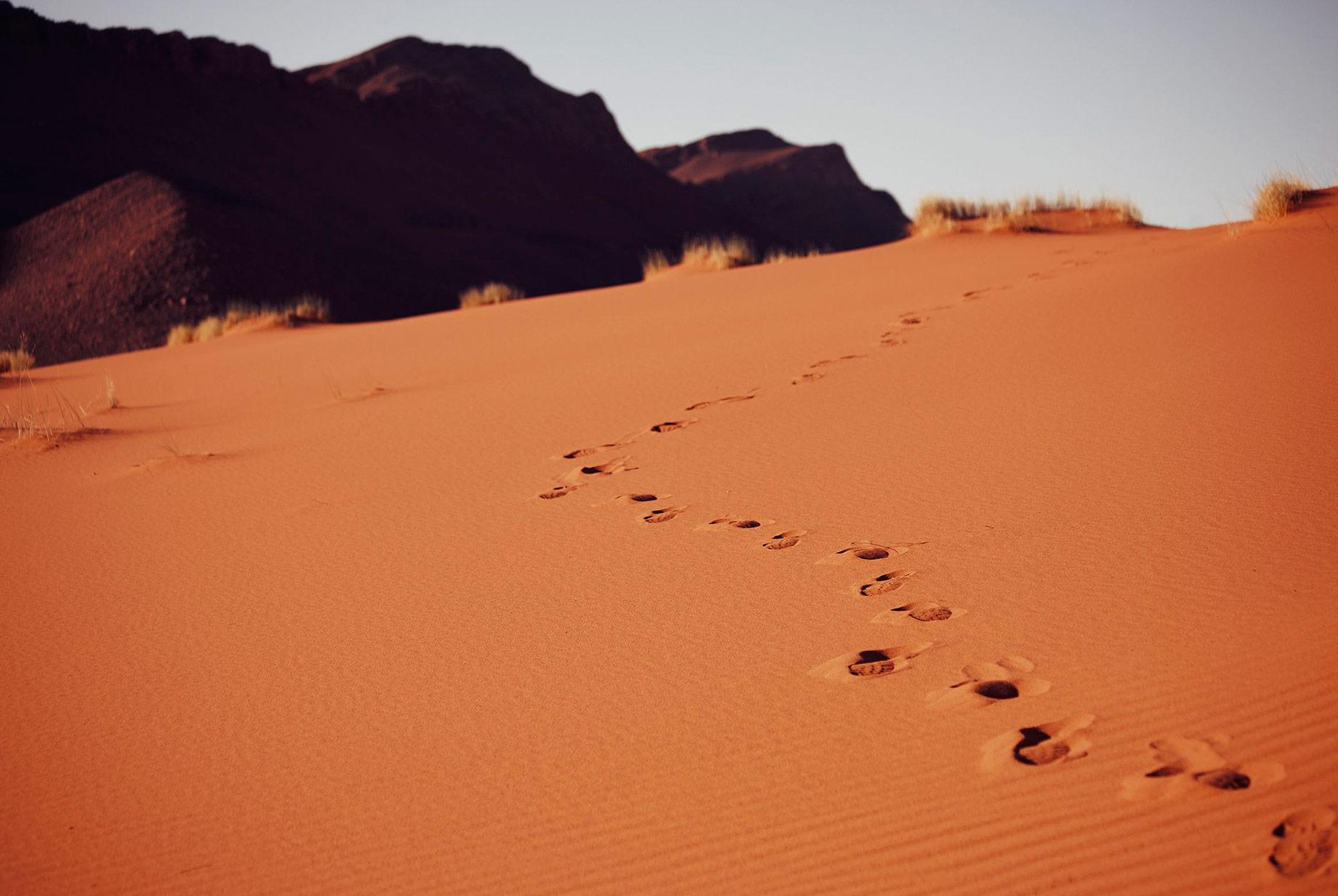 pisadas persona en el desierto de Marruecos